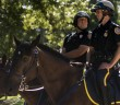 Bethlehem Police officer Jon Buskirk ,L, on Pharaoh and officer Jason Holschwander on the Bethlehem PD mounted unit's newest horse, Asa on the UC Front Lawn on Thursday, Sept. 24, 2015. Asa, whose first assignment was during Musikfest, will assist in the Pope's visit to Philadelphia on Friday, Sept. 25. (Chris Barry/ B&W Photo)