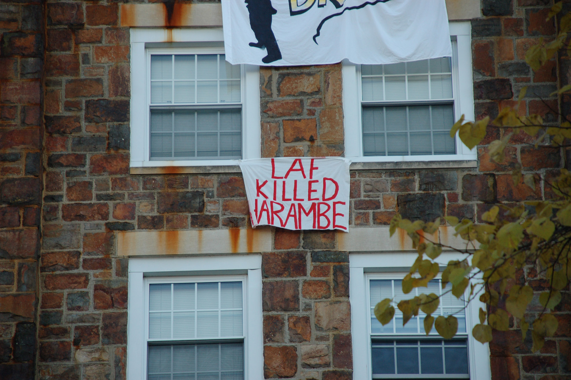 "A sign reading ""Laf killed Harambe"" hangs on Dravo House on Nov. 18, 2016. Harambe is the gorilla that was killed at the Cincinnati Zoo earlier this year. (Gaby Morera/B&W Staff)"