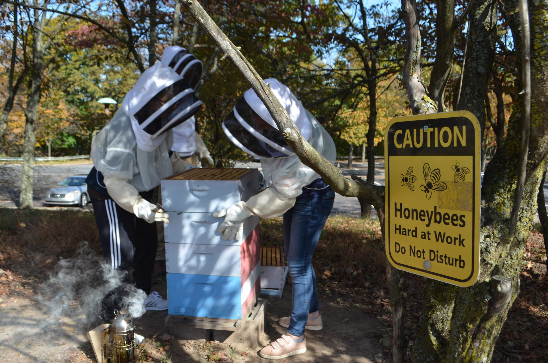 """Members of the beekeeping club tend to Lehigh's hives Oct. 22 on Mountaintop Campus. A sign on the trees near the hives reads """"Caution: Honeybees Hard at Work Do Not Disturb."""" (Delaney McCaffrey/B&W Staff)"""