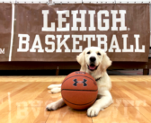 A shot in the bark: Women's basketball team gets a therapy dog