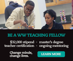 Be a WW teaching fellow